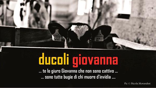 Alessandro-Ducoli-08