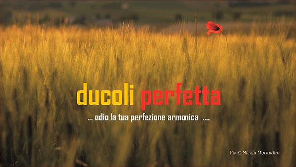 Alessandro-Ducoli-14
